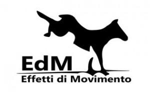 edm_logo